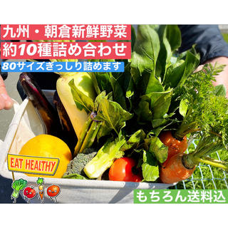 【大好評👏】九州朝倉新鮮野菜詰合せ(野菜)