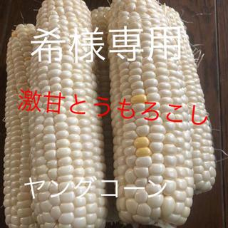 希様専用ゴールドラッシュとうもろこしヤングコーン6月発送予定(野菜)