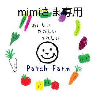 【mimiさま専用】冷蔵便・渥美半島から直送 旬彩野菜バスケット(野菜)