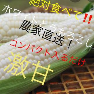 激甘高級ホワイトとうもろこしコンパクト入るだけ6月発送予定専用2箱予約(野菜)