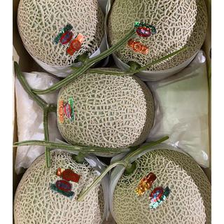 高知 赤肉 高級アールスメロン5玉 隔離栽培 仁淀ブルー(フルーツ)