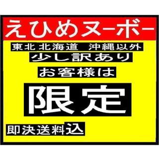 えひめヌーボー 清見タンゴール 加工用 16キロ(フルーツ)