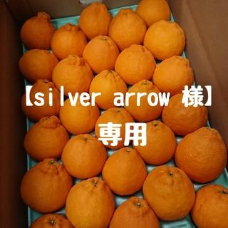 【silver arrow 様】専用ページ(フルーツ)