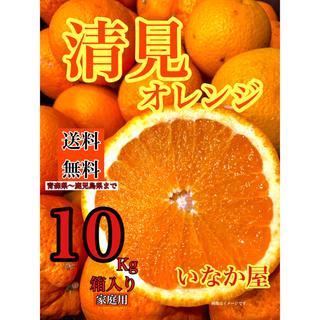 オーダ品 清見オレンジ  家庭用 5箱(フルーツ)