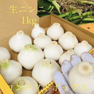 ニンニク 岡山県倉敷産 無農薬生にんにく「倉敷ホワイト」1kg 送料込(野菜)
