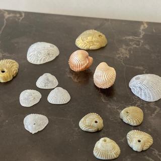 キワセイサクジョ(貴和製作所)のハンドメイド パーツ 貝殻 113番(各種パーツ)