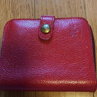 イルビゾンテ(IL BISONTE)のイルビゾンテ 折り財布(財布)