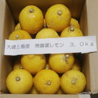 広島県大崎上島産無農薬レモン3.0kg(フルーツ)