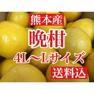 熊本産 河内晩柑(ジューシーオレンジ)  家庭用10キロ L〜4Lサイズ 送料込(フルーツ)