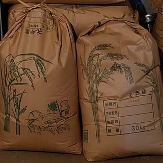 令和元年度産 玄米(20㎏)(米/穀物)