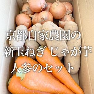 新鮮お野菜詰め合わせ!手渡しで値下げします‼︎(野菜)