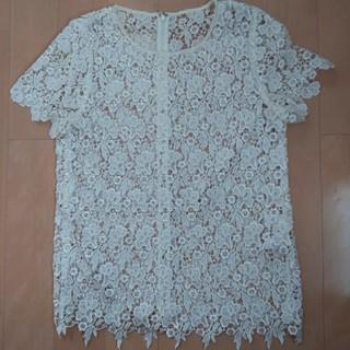 ルシェルブルー(LE CIEL BLEU)のレディース トップス(シャツ/ブラウス(半袖/袖なし))
