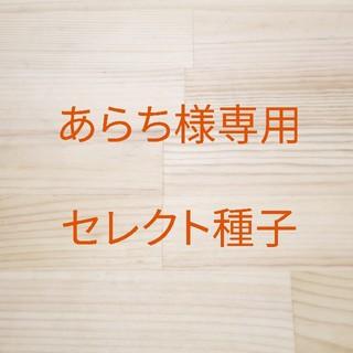 あらち様専用 セレクト種子 10袋(野菜)