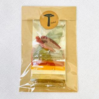 パプリカカレー スパイスセット レシピ付 自宅でスパイスカレー グルテンフリー(調味料)