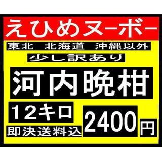 ★ か大1 えひめヌーボーの 訳あり 河内晩柑 12キロ (フルーツ)