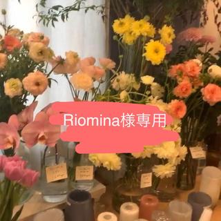 Riomina専用(その他)