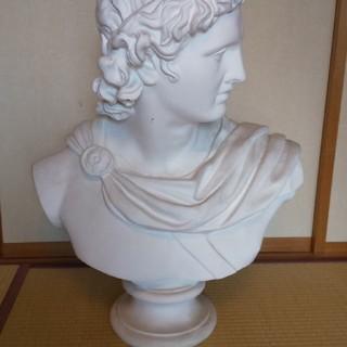 石膏像(アポロ)(彫刻/オブジェ)
