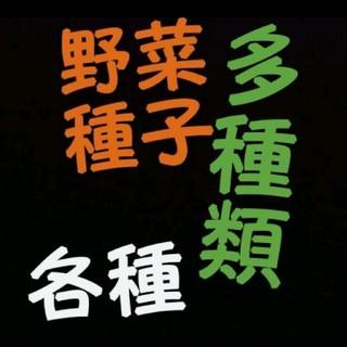 カゴメ(KAGOME)の野菜 種 各種(野菜)