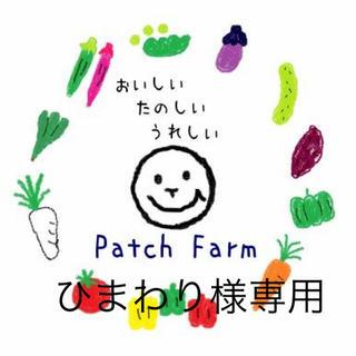 【ひまわり様専用】冷蔵便 渥美半島から直送!旬彩野菜バスケット(野菜)