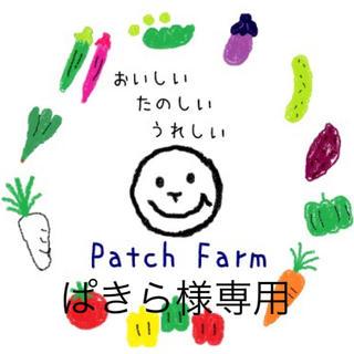 【ぱきら様専用】冷蔵便 旬彩野菜バスケット(野菜)