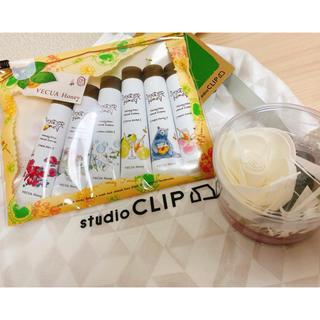 スタディオクリップ(STUDIO CLIP)のハンドクリームギフト&フレグランスオイル(ハンドクリーム)