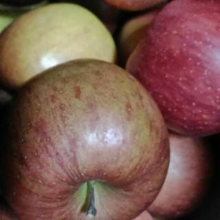 4月23日発送分 リンゴ 箱込み7kg ご家庭用 岩手県産 (フルーツ)