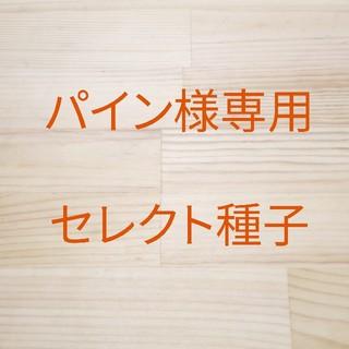 パイン様専用 セレクト種子 10袋(野菜)