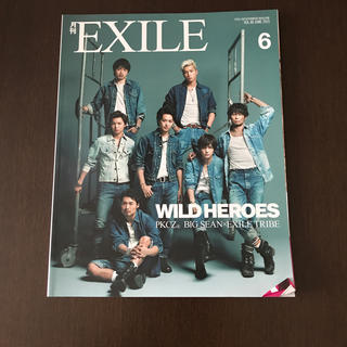 エグザイル トライブ(EXILE TRIBE)の月刊 EXILE (エグザイル) 2015年 06月号(音楽/芸能)