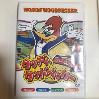 ウッディ・ウッドペッカー DVD(キッズ/ファミリー)