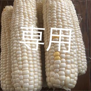 激甘高級ホワイト、ゴールラッシュとうもろこし6月発送予定専用品‼️(野菜)