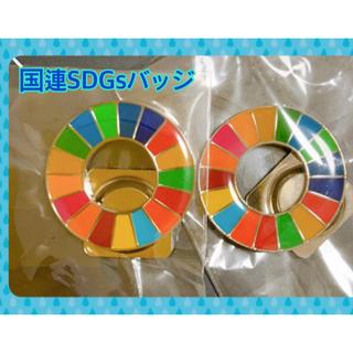 国連SDGsバッジ 強力マグネット式 2個セット《全国送料無料》(バッジ/ピンバッジ)