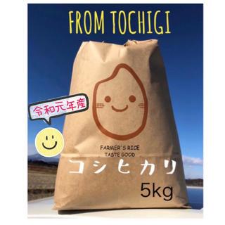 おすすめ☆農家自慢のお米☆白米5キロ(米/穀物)
