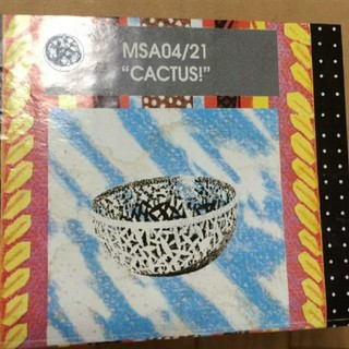 アレッシィ(ALESSI)の- Cactus ! Citrus Basket MSA 04/21 GM (その他)
