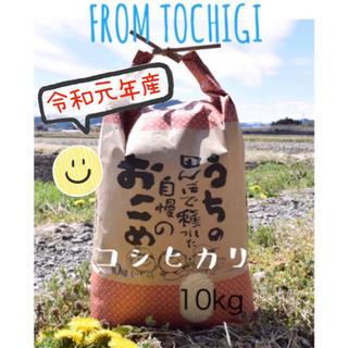 おすすめ★農家自慢のお米★白米10キロ(米/穀物)