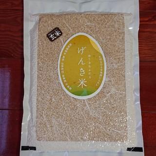 農家自家米・有機・無農薬・コシヒカリ(玄米)(米/穀物)