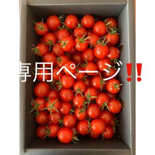 トマト 1kg ☆キャロルセブン☆と「熟成あまか芋」紅はるか3kg(野菜)