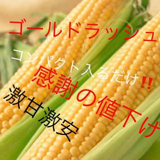 激甘すぎゴールドラッシュとうもろこしコンパクト入るだけ6月発送予定❗️専用品(野菜)
