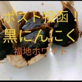 黒にんにく  760g 約3ヶ月分  青森県産福地ホワイト使用(野菜)