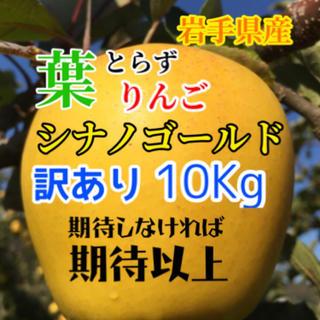 【送料込】訳あり葉とらずりんご シナノゴールド 30個前後 約10kg(フルーツ)
