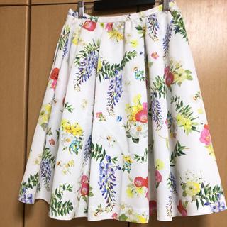 チェスティ(Chesty)のChesty 【美品】スカート(ひざ丈スカート)