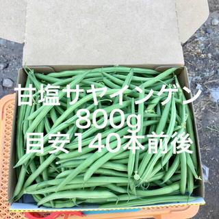 【鹿児島産】甘塩サヤ箱込み800g^_^(野菜)