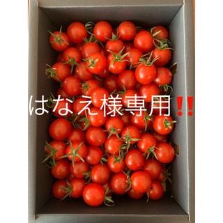 キャロルセブン2kg と 「熟成あまか芋」1kg セット(野菜)