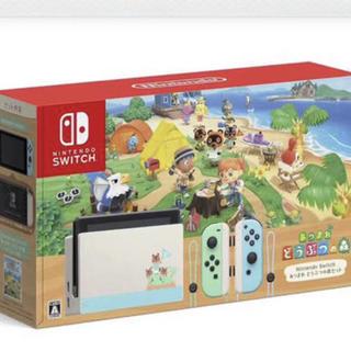 ニンテンドースイッチ(Nintendo Switch)のあつまれどうぶつの森(その他)