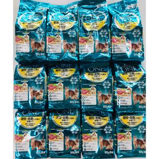 Nestle - 1408-4 ピュリナワンのお買い得品