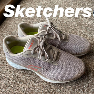 スケッチャーズ(SKECHERS)のスケッチャーズ ゴルフシューズ Skechers (シューズ)