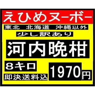 か大3  えひめヌーボーの 訳あり 河内晩柑 12キロ(フルーツ)