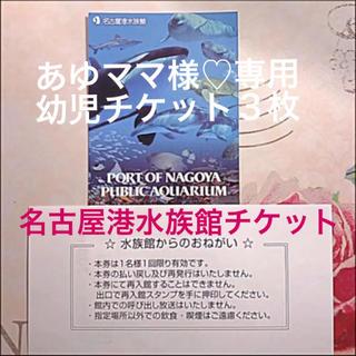 名古屋港水族館 幼児チケット3枚(*´꒳`*)(水族館)