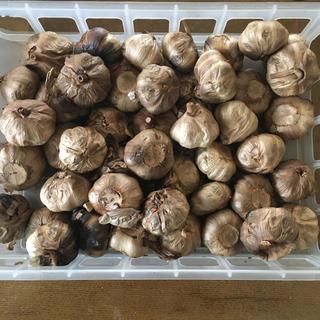 国産 熟成発酵黒にんにく 2.5kg(55個程度)(野菜)