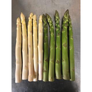 佐賀県極太ホワイトアスパラガス 5本&熊本県極太グリーンアスパラガス 5本(野菜)