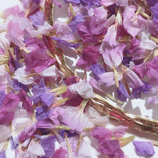 スターチス パープルミックス ハンドメイドのフラワー/ガーデン(ドライフラワー)の商品写真